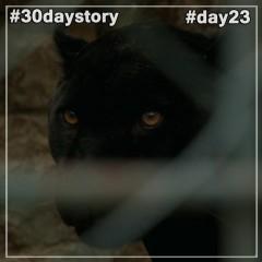 #day23 Чёрное на чёрном (#30daystory)