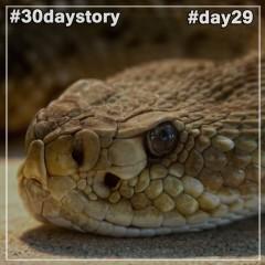 #day29 Яд (#30daystory)