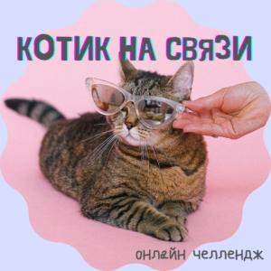 НЕ ЛАПКИ «Котик на связи» (онлайн доступ)